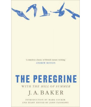 The Peregrine: With The Hill of Summer