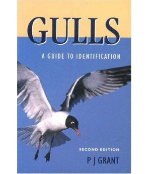 Gulls, Second Edition: A Guide to Identification (Natural World)