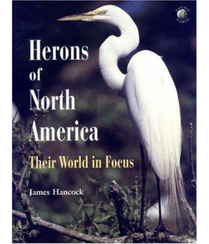Herons of North America: Their World in Focus (Natural World)