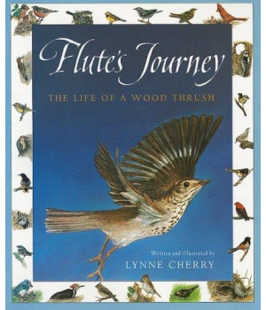 harcourt school publishers collections: chapter book grade 4 flute's journey
