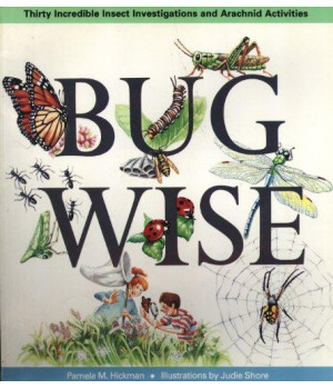 bugwise: thirty incredible insect investigations and arachnid activities