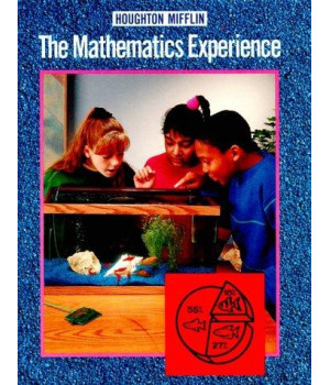 The Mathematics Experience