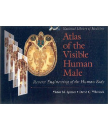 Atlas of the Visible Human Male: Reverse Engineering of the Human Body