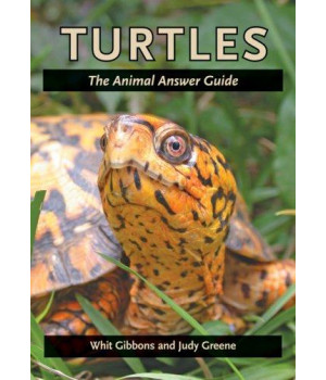 Turtles: The Animal Answer Guide (The Animal Answer Guides: Q&A for the Curious Naturalist)