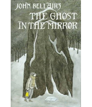the ghost in the mirror