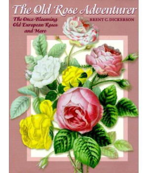 The Old Rose Adventurer: The Once-Blooming Old European Roses and More