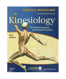 Kinesiology: The Skeletal System and Muscle Function, 2e