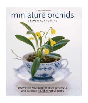 Miniature Orchids