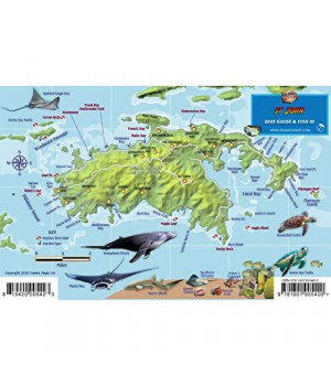St. John USVI Dive Map Fish ID Virgin Islands Franko Maps Waterproof Fish Card